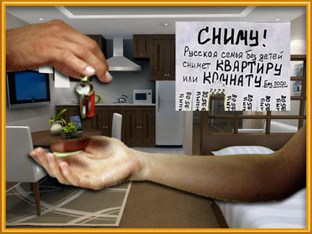 Где снять квартиру в Ярославле?