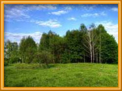 В октябре 20 многодетных семей получили земельные участки