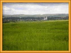 В Ярославле на 50% снижена цена для арендаторов земли